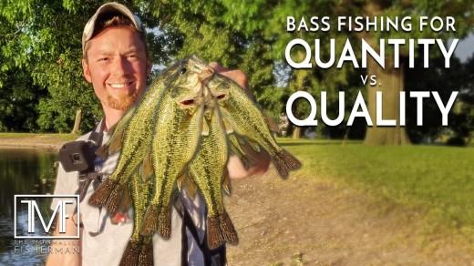 Bass Fishing for Quantity vs Quality