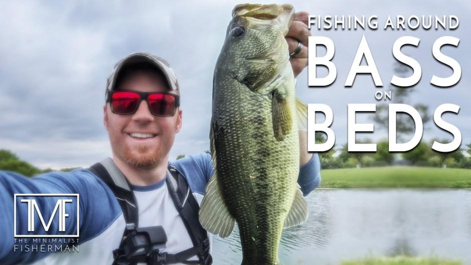 Fishing Around Bass on Beds