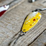 Ned Rig ElaZtech Damage to my lures!