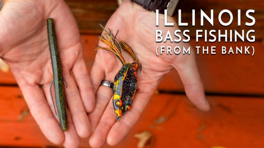 Illinois Bass Fishing from the Bank