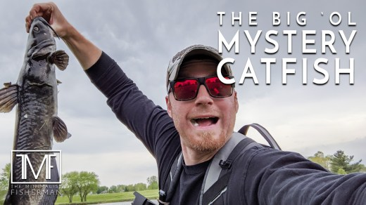 The Big 'ol Mystery Catfish