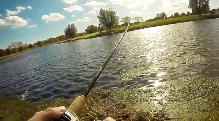 Fishing a Wind Blown Shoreline
