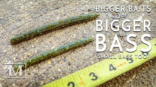 Bigger Baits for Bigger Bass (Small Bass Too)