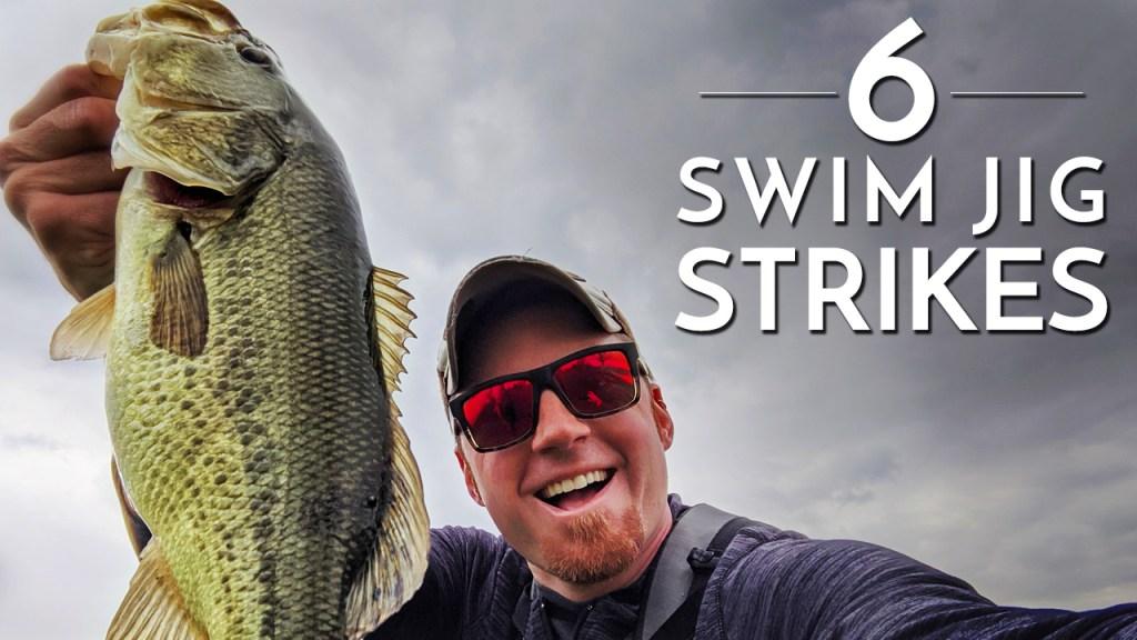 6 Swim Jig Strikes