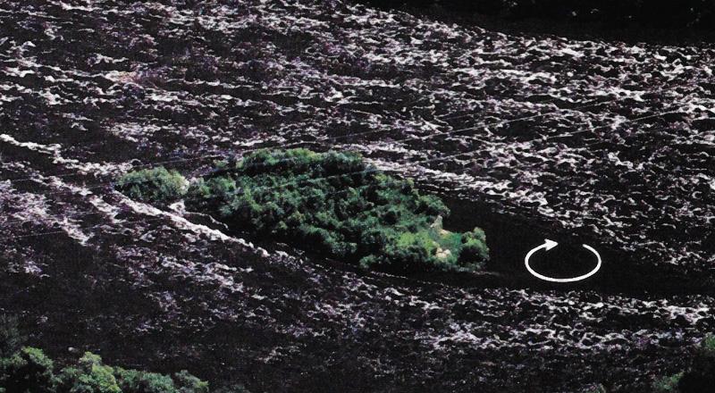 river island eddies