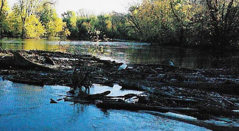 log jams blocking a river