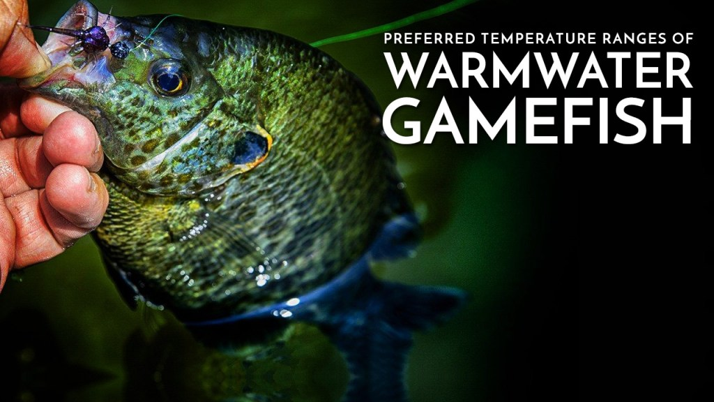 Preferred Temperatures of Warmwater Gamefish