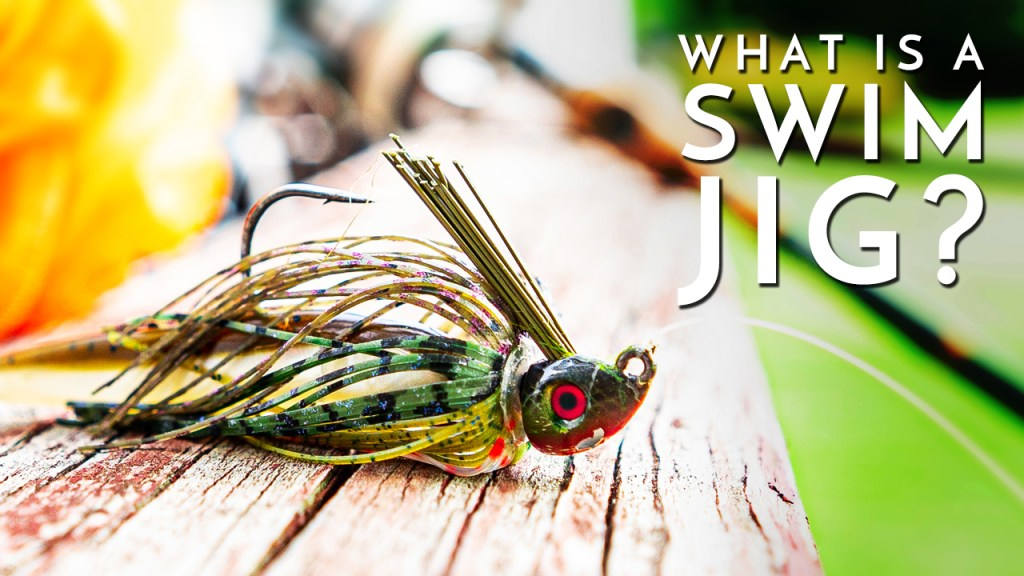 What is a Swim Jig