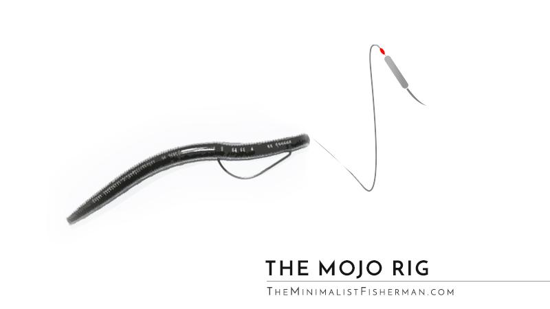 The Mojo Rig with a Senko Worm Setup