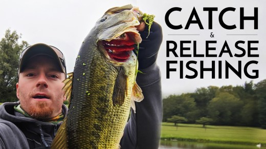 Catch & Release Fishing / Selective Harvest / Largemouth Bass / AJ Hauser
