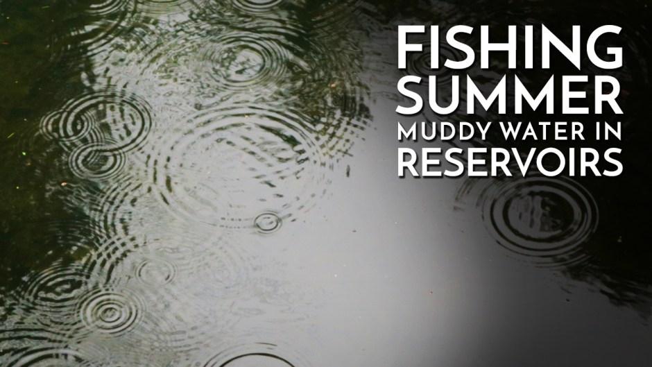 Fishing Muddy Reservoir Water in Summer