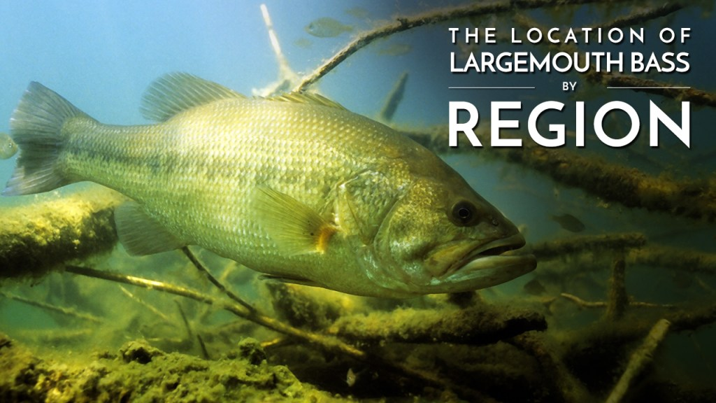 Locating Largemouth Bass by Region