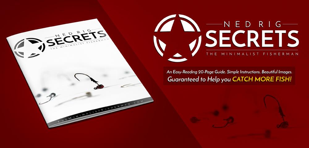 Ned Rig Secrets by AJ Hauser