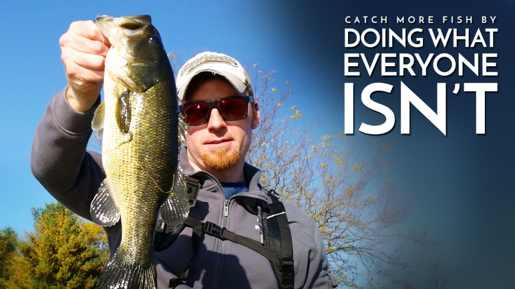 Catch More Fish by Doing What Everyone Isn't