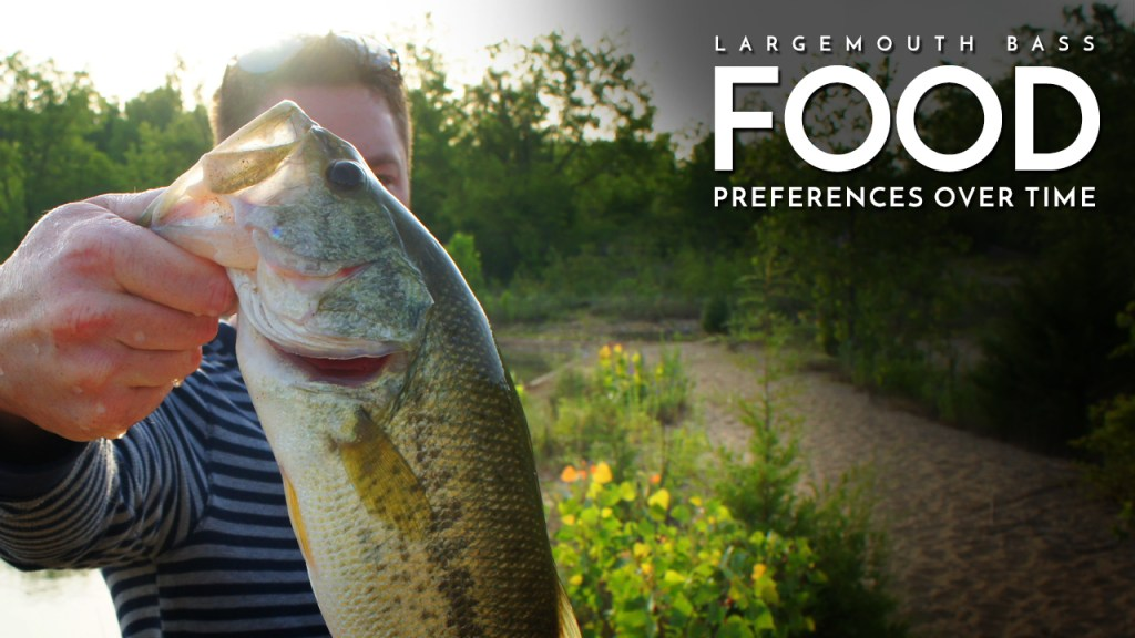 Largemouth Bass Food Preferences Over Time