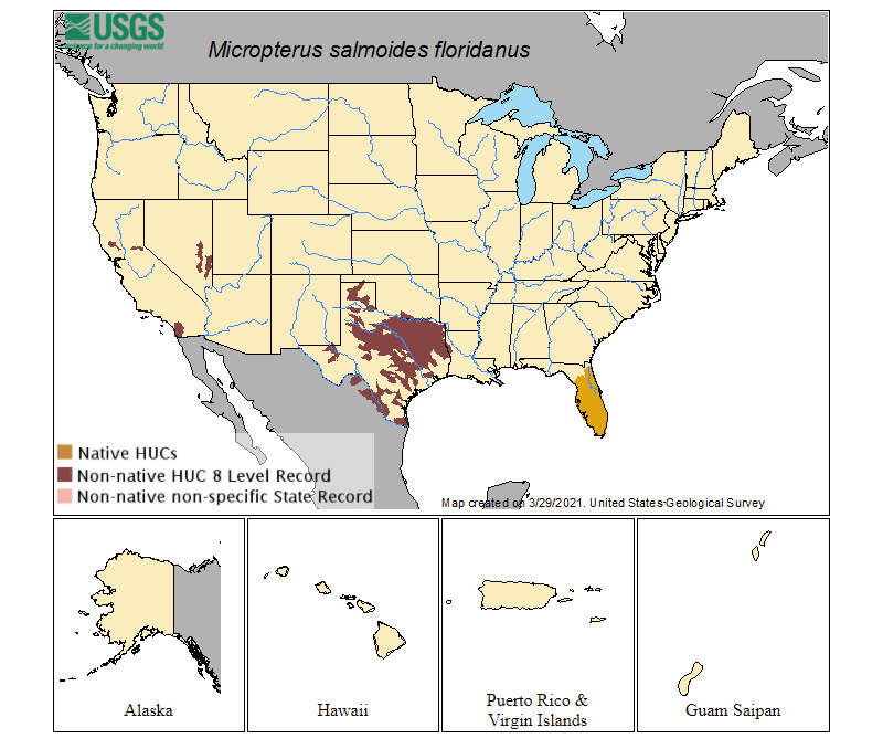 Known Range of Florida Strain Largemouth Bass in The United States