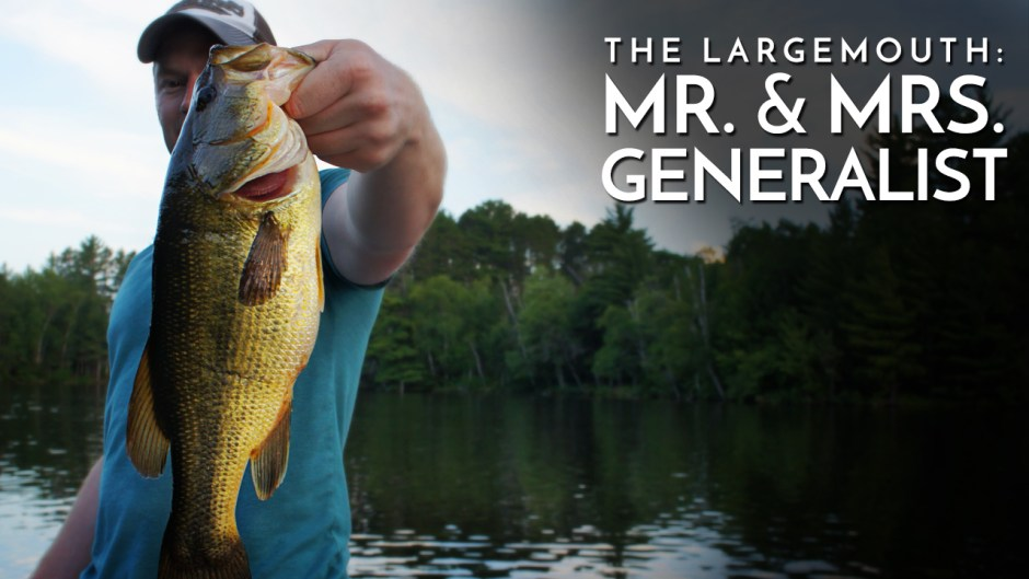 The Largemouth Mr. & Mrs. Generalist