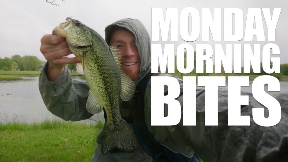 Rainy Day Largemouth Bank Fishing | MMB Ep. 11