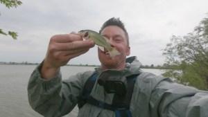 Mule Jig Donkey Tail Largemouth Bass