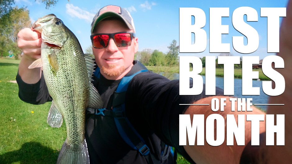Illinois Fishing in May best bites of the month bbotm Ep. 2
