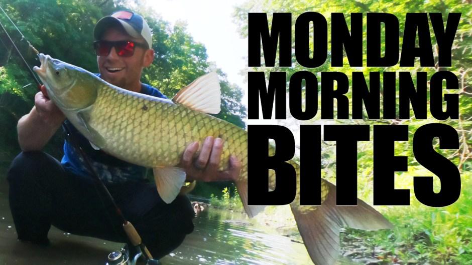 Creek Fishing 101 | MMB Ep. 20