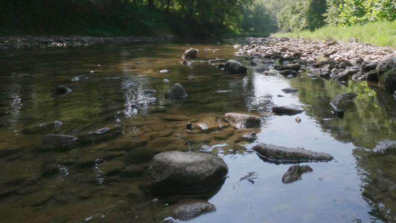 Creek Fishing in Illinois: Heaven on Earth
