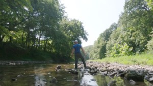 Creek Fishing in Illinois: Beautiful Spot