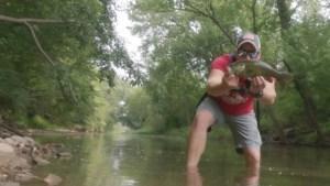 Creek Fishing in Illinois: Rebel Teeny Wake-R Smallmouth Bass