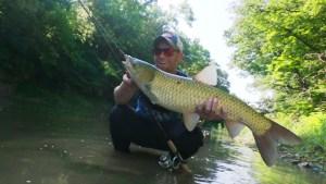 Creek Fishing Carp Inline Spinner