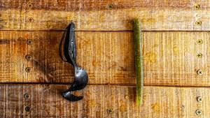 Lunker City Salad Spoon Cabin Creek Salty Sinkin' Worm