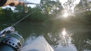 Early Morning Kayak Ride Creek