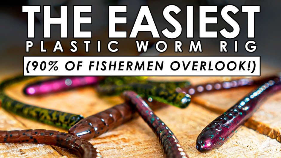 EASY Plastic Worm Rig Will Help YOU Catch More Fish!
