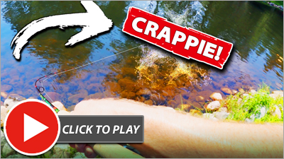 A Crappie Fishing Secret